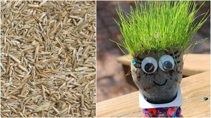 Do it yourself Thursday: het grasmannetje!