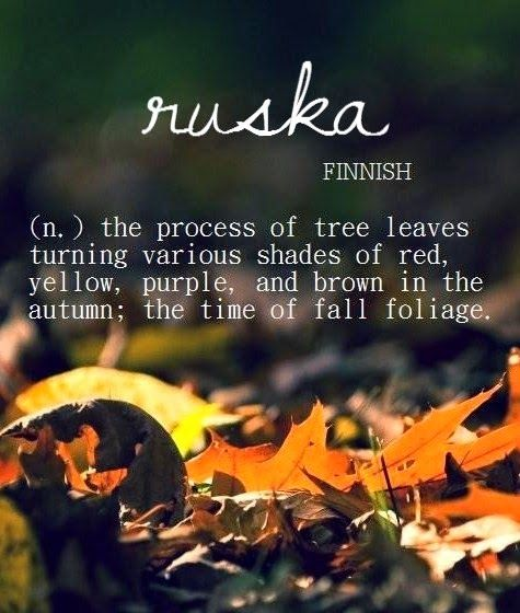 Photo: Ruska [Finnish]