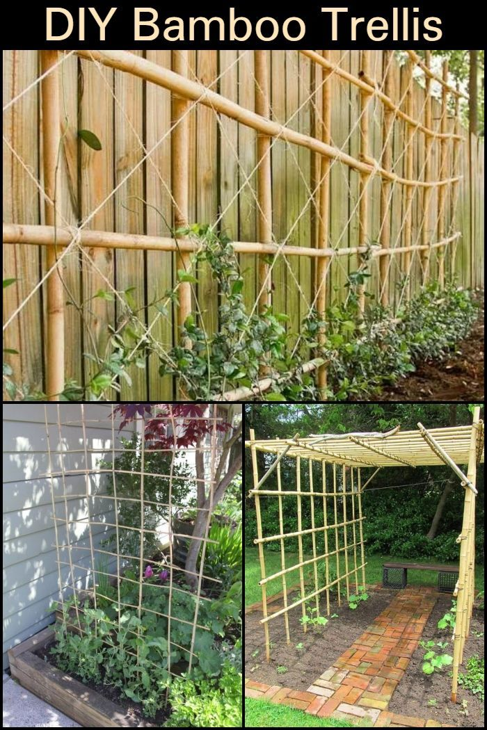 Diy Bamboo Trellis With Images Diy Garden Projects Bamboo