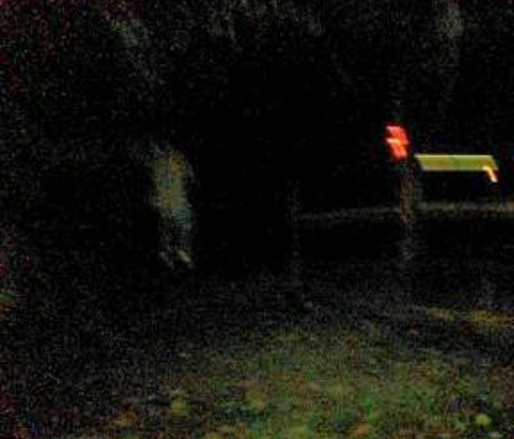 """THE HANGED MAN - PRINCESS ANNE TOUR! The Ghost Walk in Princess Anne, Maryland is the only walk where children are not permitted to attend. This is due not only to the harsh content shared on the walk, but also to the strange things that occur on the ghost walk. The picture above was one of the first """"strange"""" occurrences that happened on the Princess Anne Ghost Walk. Getting the image of what appears to be a man hanging from a tree is rare indeed, but it is particularly rare when you get it…"""