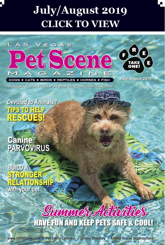 Las Vegas Pet Scene Magazine July August 2019 In 2020 Pet Event Therapy Dogs Animal Society