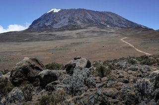 Kilimanjaro Tracking