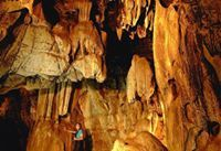 Book your guided tour now and discover just some of the hidden treasures only found in Mpumalanga!