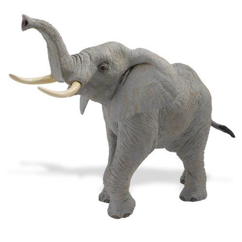 "Safari Ltd Wildlife Wonders African Elephant by Safari. Save 52 Off!. $13.50. Includes five language educational information. For ages 3 and above. Measures 11.5"" L x 10"" H. From the Manufacturer                This extremely realistic, large scale and lightweight replica brings your favorite wild animals to life for hours of play. Hand-painted and phthalate free as always. It includes 5-language educational information. This replica measures 11.5"" L x 10"" H.                        ..."
