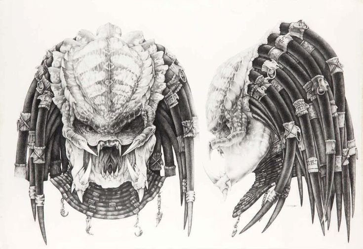 рисунки хищника без маски