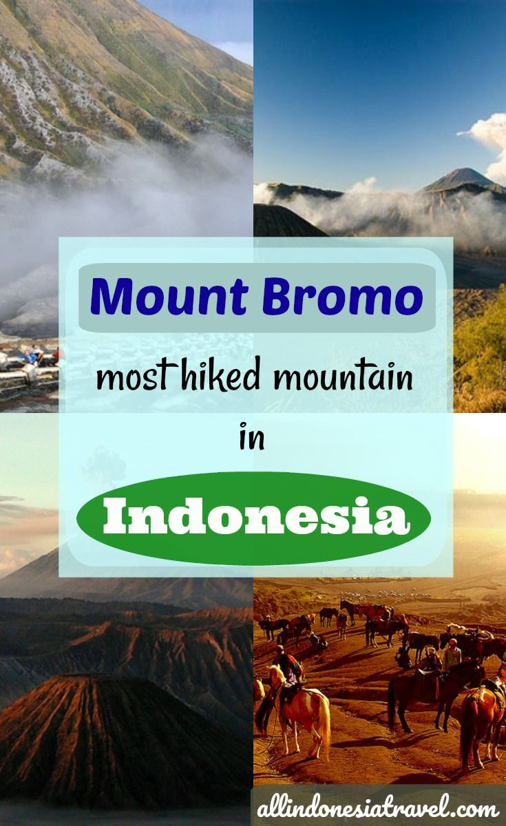 Guide to Hiking Mount Bromo, East Java |  Mount Bromo which stands tall at 2329 m is the most iconic and the most hiked mountain in Indonesia. This is one of the top 10 things to do in Java and rightly so. The mountain beckons majestically despite having the entire top blown off and with a crater inside that keeps spewing off white sulphurous smoke. |  http://allindonesiatravel.com