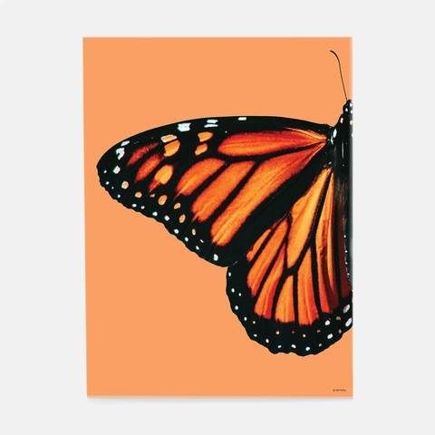 Wingin' out. Cool down and relax with one of these funky, nature-inspired prints. If its time for your decor to go through a metamorphis of its own, start here. Small Canvas Paintings, Easy Canvas Art, Small Canvas Art, Cute Paintings, Mini Canvas Art, Acrylic Painting Canvas, Butterfly Acrylic Painting, Butterfly Canvas, Simple Acrylic Paintings