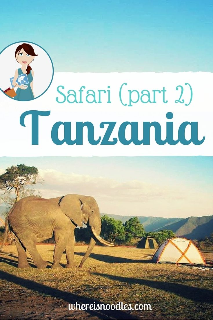 From the dusty plains of the Serengeti to a haven of wildlife in the Ngorongoro Crater, here's part 2 of my safari adventures in Tanzania.