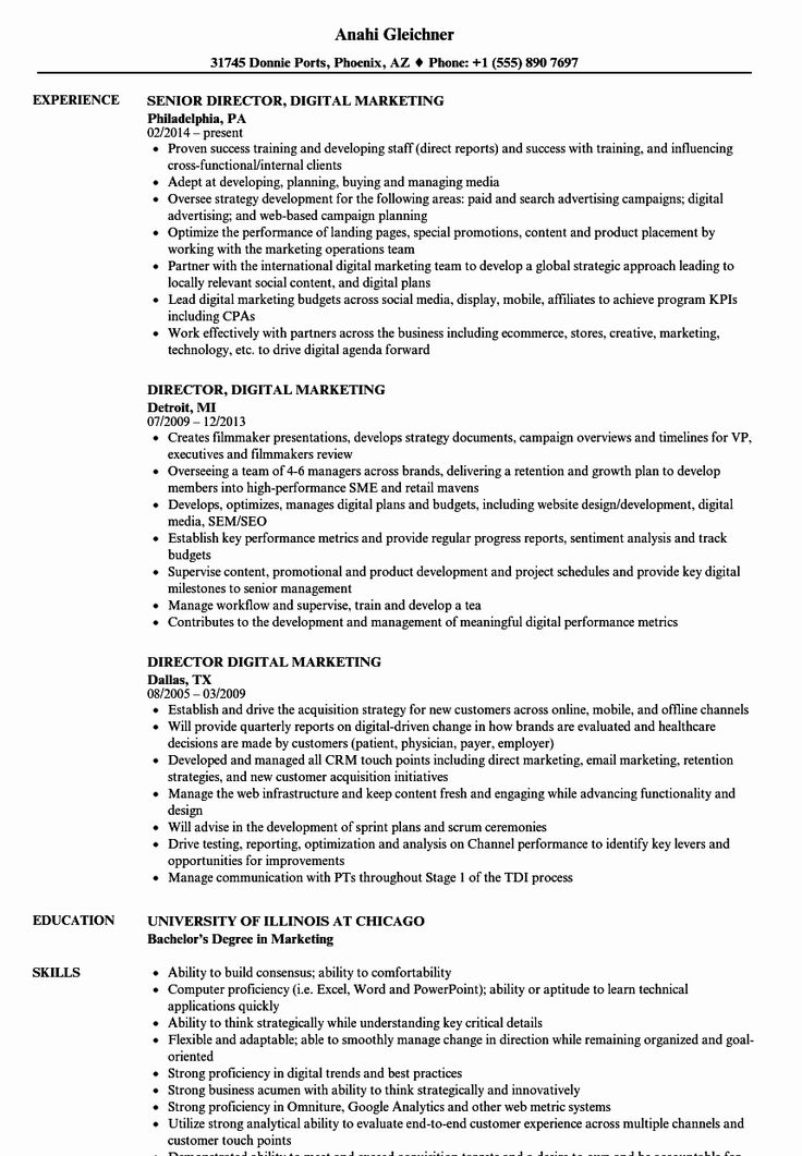 Digital Marketing Resume Example Unique Director Digital