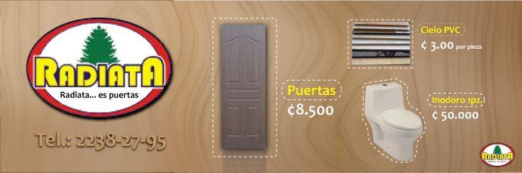 Propuesta cintillo en revista distribuidores de puertas hechas con pino radiata.