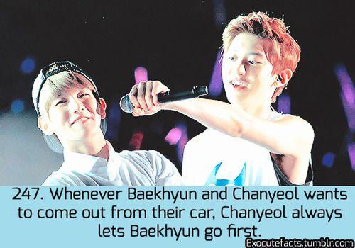 Exo Facts. #BaekYeolshipper