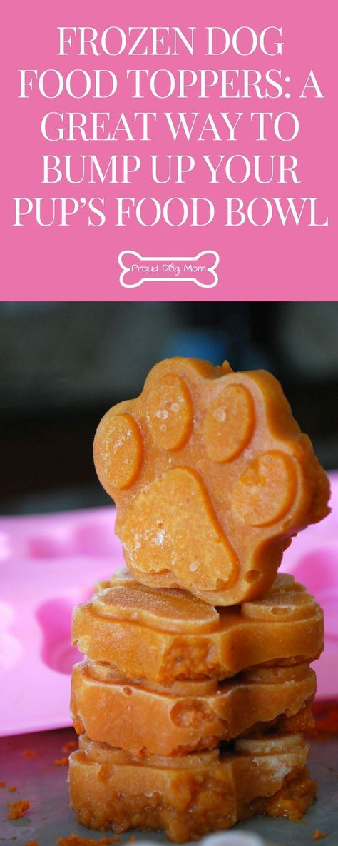 Frozen Dog Food Toppers: A Great Way To Bump Up Your Pup's Food Bowl | Pumpkin Dog Treats | Homemade Dog Treats | Frozen Dog Treats
