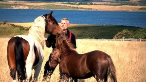 Klaus Ferdinand Hempfling   Connected Equine- and Life Consulting in personal relations, business and society