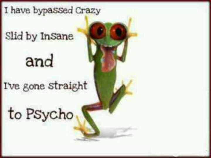 Funny frogs Funny Stuff Pinterest Funny, Love and