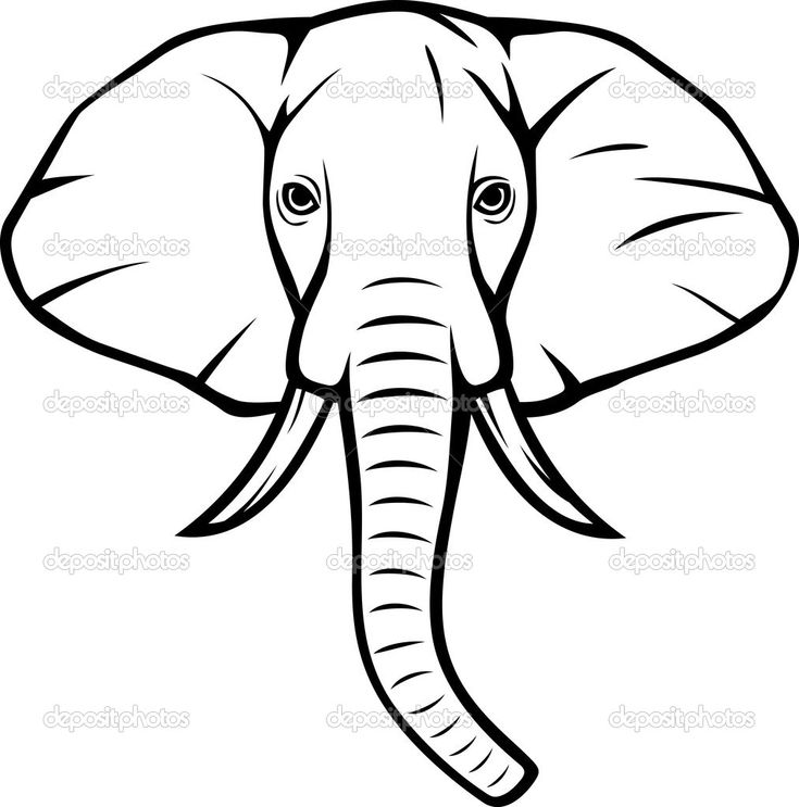Line Drawing Elephant Face : Pix for gt indian elephant head drawings clean lines