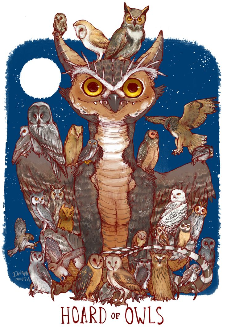HOARD OF OWLS PRINT from IGUANAMOUTH Owl, Cat food and