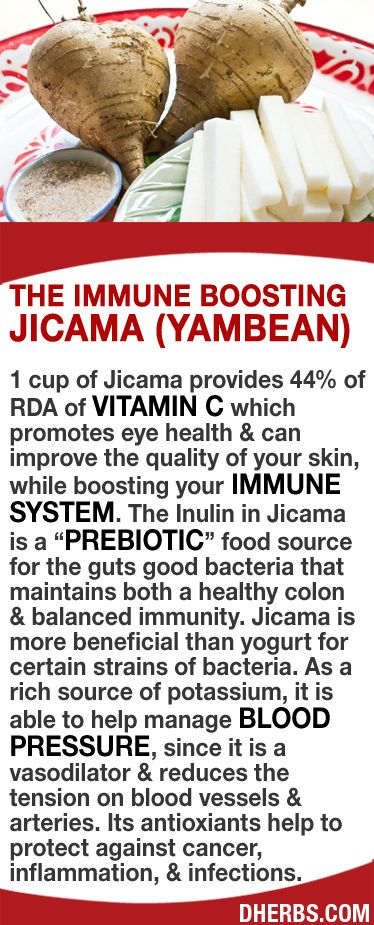 "1 cup of Jicama provides 44% of RDA of Vitamin C which can improve the quality of your skin, while boosting your immune system. The Inulin in Jicama is a ""prebiotic"" food for the guts good bacteria that maintains both a healthy colon & balanced immunity. As a rich source of potassium, it is able to help manage blood pressure, since it is a vasodilator & reduces the tension on blood vessels & arteries. Its antioxiants help to protect against cancer, inflammation, & infections. #dherbs…"