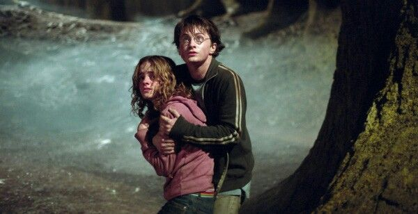 I love this couple Harry 💜Hermione