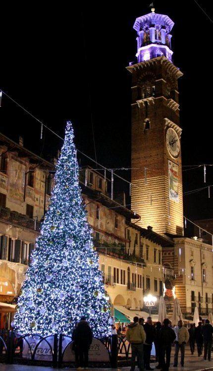 Christmas tree in Piazza della Erbe, Verona, Veneto, Italy (by jim_skreech on Flickr)
