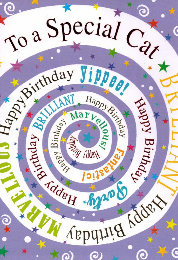 to / for the CAT birthday card - pet / kitten happy birthday card