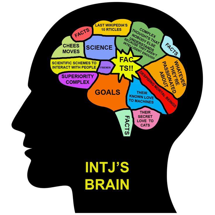 MBTI in Real Life - INTJ's brain