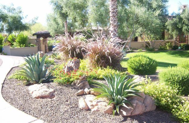 xeroscape rock garden