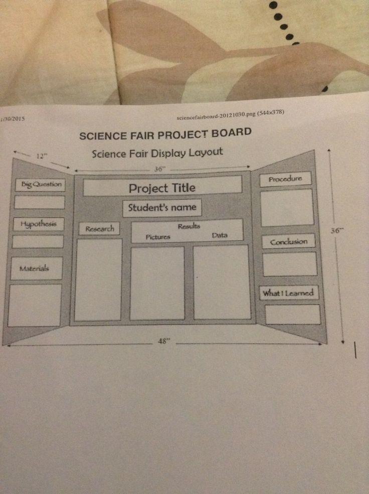 best 25  biology science fair projects ideas on pinterest