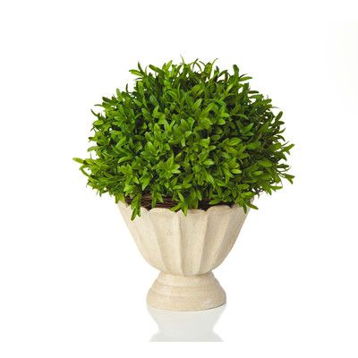 Lark Manor Faux Myrtle Topiary in Pot