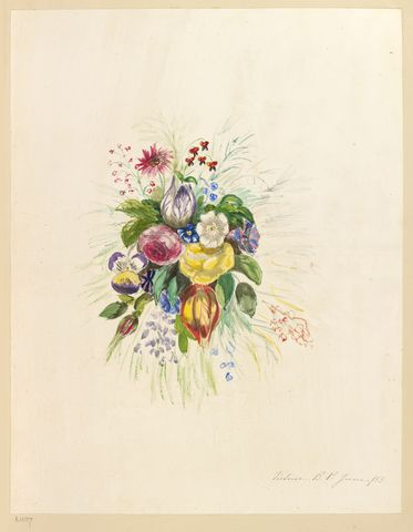 Study of flowers  dated June 1853 by Empress Friedrich, consort of Friedrich III, Emperor of Germany & King of Prussia, 1st daughter of Queen Victoria (1840-1901)