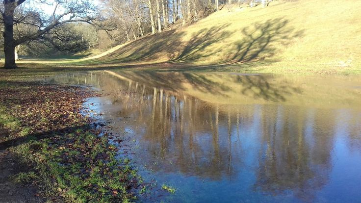 Giant puddle at Blenheim Palace Park 281217