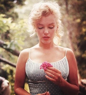 Marilyn Monroe alapan  Marilyn Monroe  Marilyn MonroeA Real Woman, Marilyn Monroe, Anniversaries Gift, Real Women, Marilynmonroe, Norma Jeans, People Change, Nature Beautiful, True Beautiful