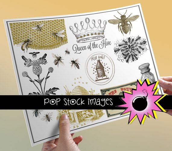 Bees & Beekeeping - Honey - Queen Bee Digital Collage Sheet - Digital Images of Bees and Bee Hives - Instant Download