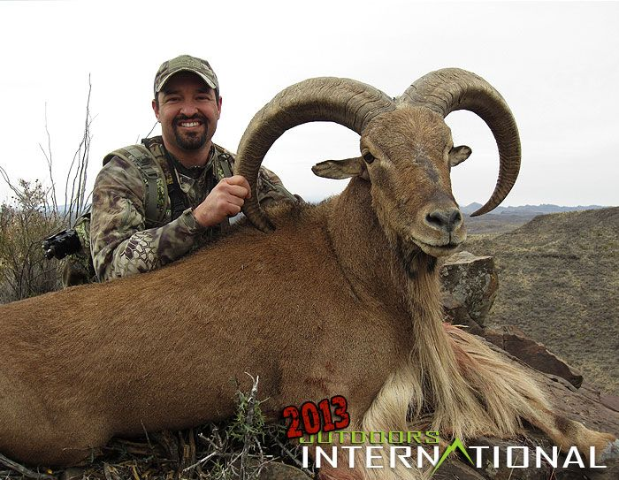 Cory Glauner with his 32 inch aoudad ram