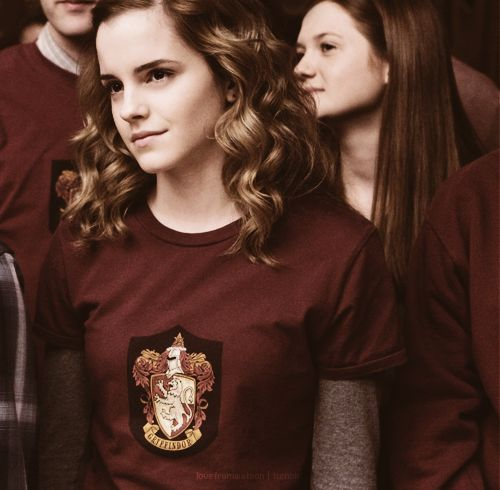 Her hair is gorgeous. Hermione's hair is supposed to be a frizz ball