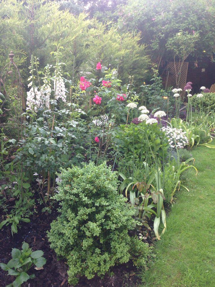 Flower bed - June