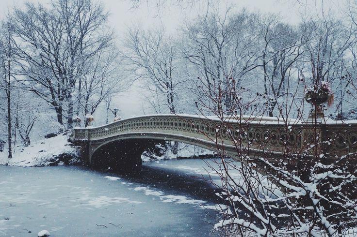 Bow Bridge, winter wonderland in Central Park
