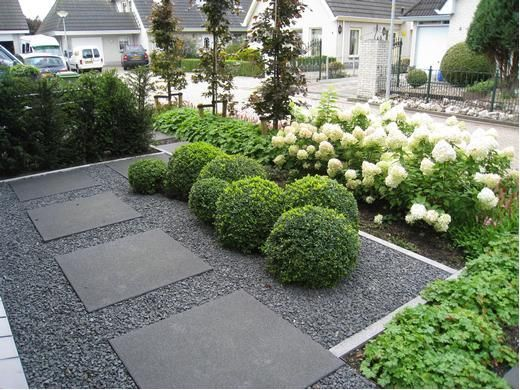 Simple and stylish front garden with pavers, gravel, box balls and hydrangea hedge.