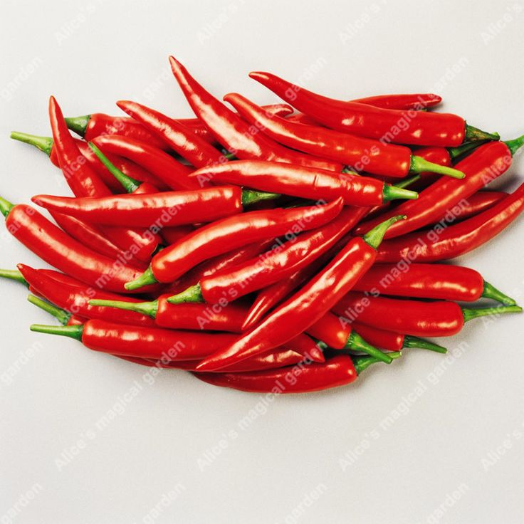 >> Click to Buy << 100 Pcs / pack Hot Pepper Capsicum annuum Ornamental Chili Seeds Vegetables and fruit seeds Bonsai plants Seed for home garden #Affiliate