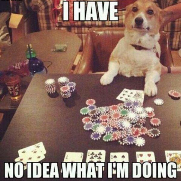 Poker Möglichkeiten