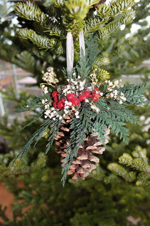 37 best images about christmas pine cones on pinterest