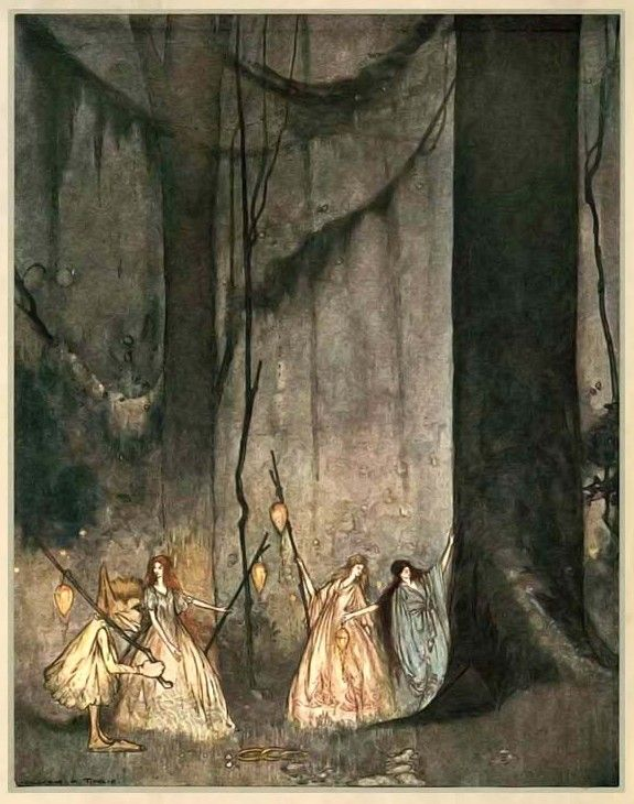 Fairy lights beneath the cedars. william timlin