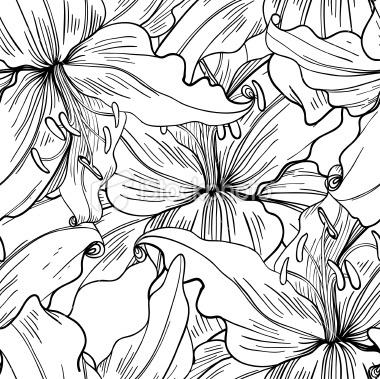 seamless monochrome pattern of lilies   Stock Illustration   iStock
