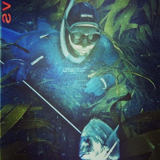 Spearfishing ~ ph. by Geoffrey Geyer   Seac Spearfishing Team ~ France   #spearfishing #seacsub #seac #underwater #scubadiving #scuba #water #seacteam #team