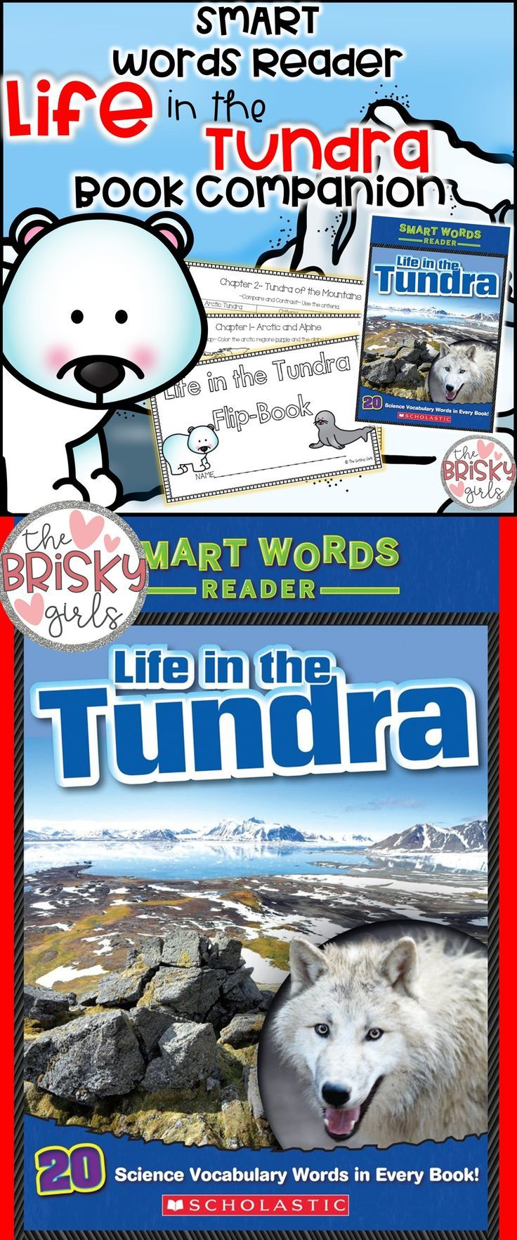 Tundra Life In The Tundra Animals In The Tundra Tundra Habitat Tundra Habitat Project Animals And Habitat First Grade Projects Flip Book Tundra Activities