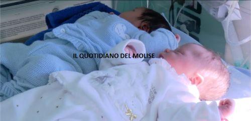 Molise: #Isernia: #-498 #parti per arrivare a quota 500 per salvare ostetricia (link: http://ift.tt/2iVF2nS )