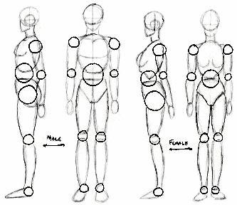 comment dessiner un humain