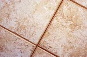 Best Grout Sealers For Sealing Grout - How to Seal Grout | Grout Cleaning DIY