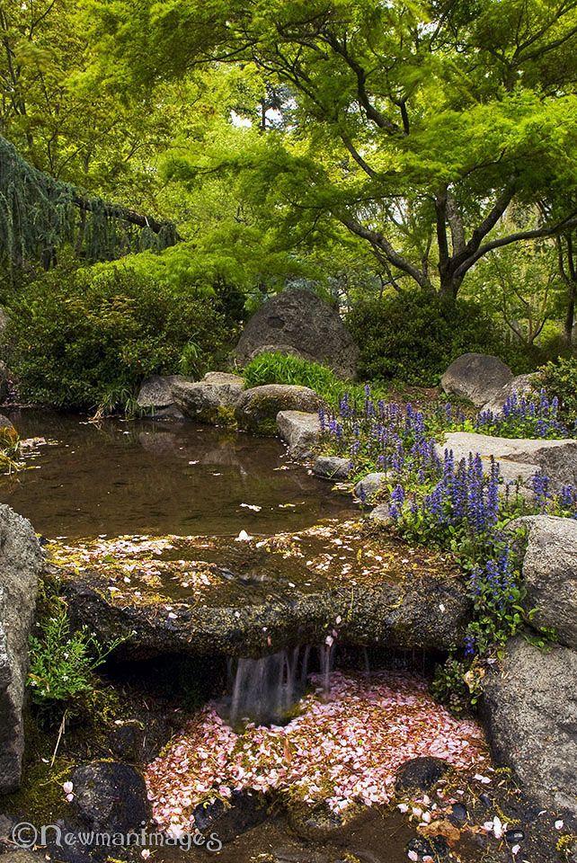 Ashland Oregon Lithia Park Japanese Garden Lithia Park Parks Division City Of Ashland Oregon 2017 Japanese Japanese Garden Colorful Landscaping Garden Images