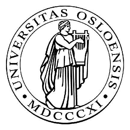 Visste du at Lambertseter vgs er en Universitetsskole? Det betyr blant annet at skolen samarbeider med Universitetet i Oslo om en (enda) bedre lærerutdanning og at skolen har et tett samarbeid med UiO om forskning og utvklingsarbeid. Denne uken var vi på UiO for å gi NTNU mer informasjon i en eventuell oppstart av et Univsersitetsskoleprosjekt i Trondheim.