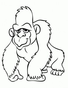 gorilla coloring pages preschool and kindergarten - Silverback Gorilla Coloring Pages